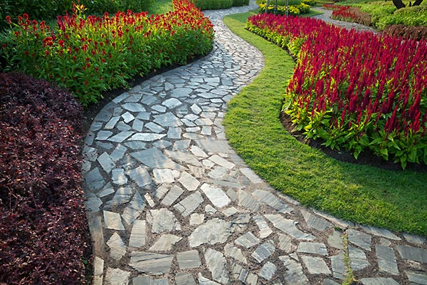 Tidewater Professional Landscaping Services